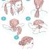 15 Maneiras Diferentes e Incríveis de Usar Trança! cabelos longos vídeos Tutoriais Compilação 2019