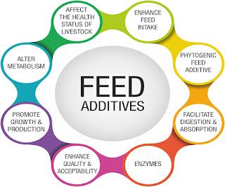 Zeolite Animal Feed Aadditive