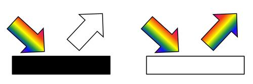 black vs white perception
