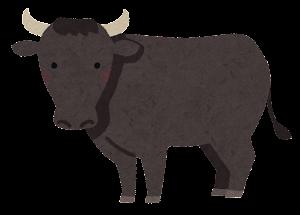 和牛のイラスト(黒毛和種)