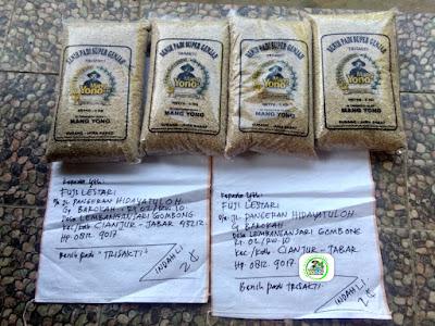 Benih pesanan FUJI LESTARI Cianjur, Jabar..   (Sebelum Packing)