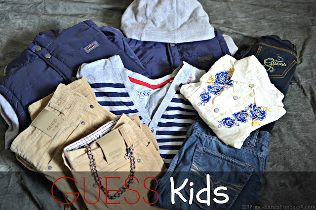 Guess Fall Line