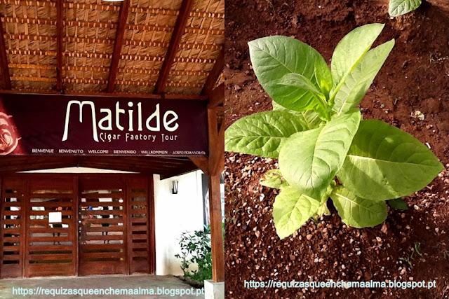 REPÚBLICA DOMINICANA Fábrica Matilde
