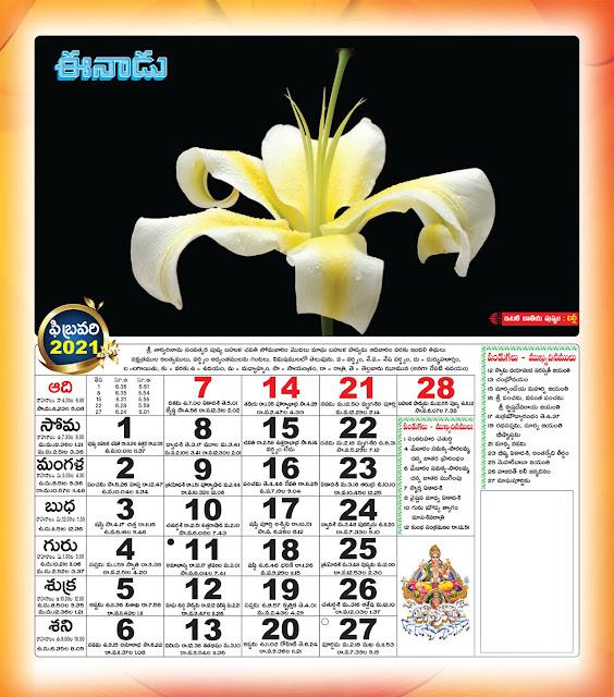 Eenadu Telugu Calendar February 2021