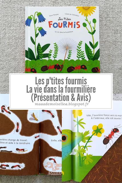 Les p'tites fourmis - La vie dans la fourmilière (Présentation & Avis)(Chut, les enfants lisent # 112)