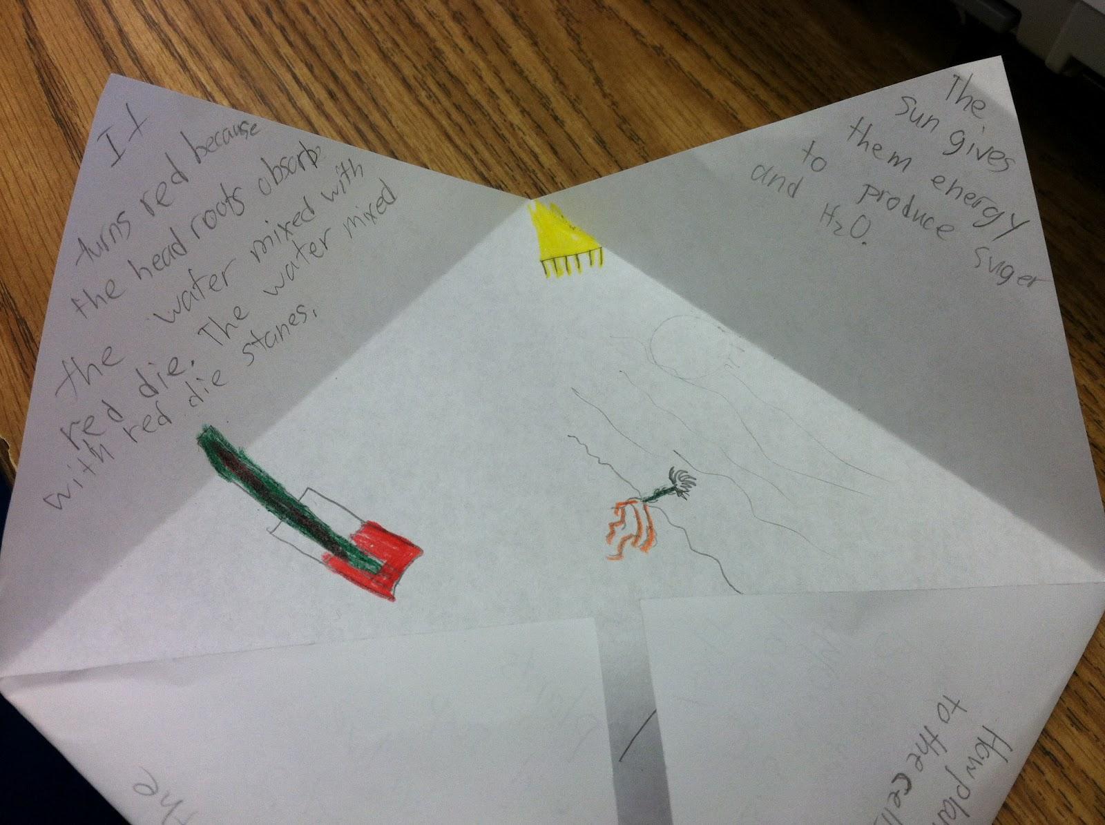 Workbooks scott foresman social studies workbook answers 5th grade : April 2012 - Teaching in Room 6