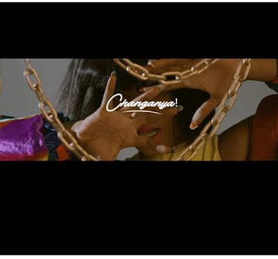 VIDEO | Gigy Money Ft Tushynne _Changanya  Mp4 | DOWNLOAD