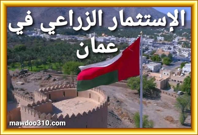 الإستثمار الزراعي في سلطنة عمان (كيف تستثمر أموالك في الزراعة)