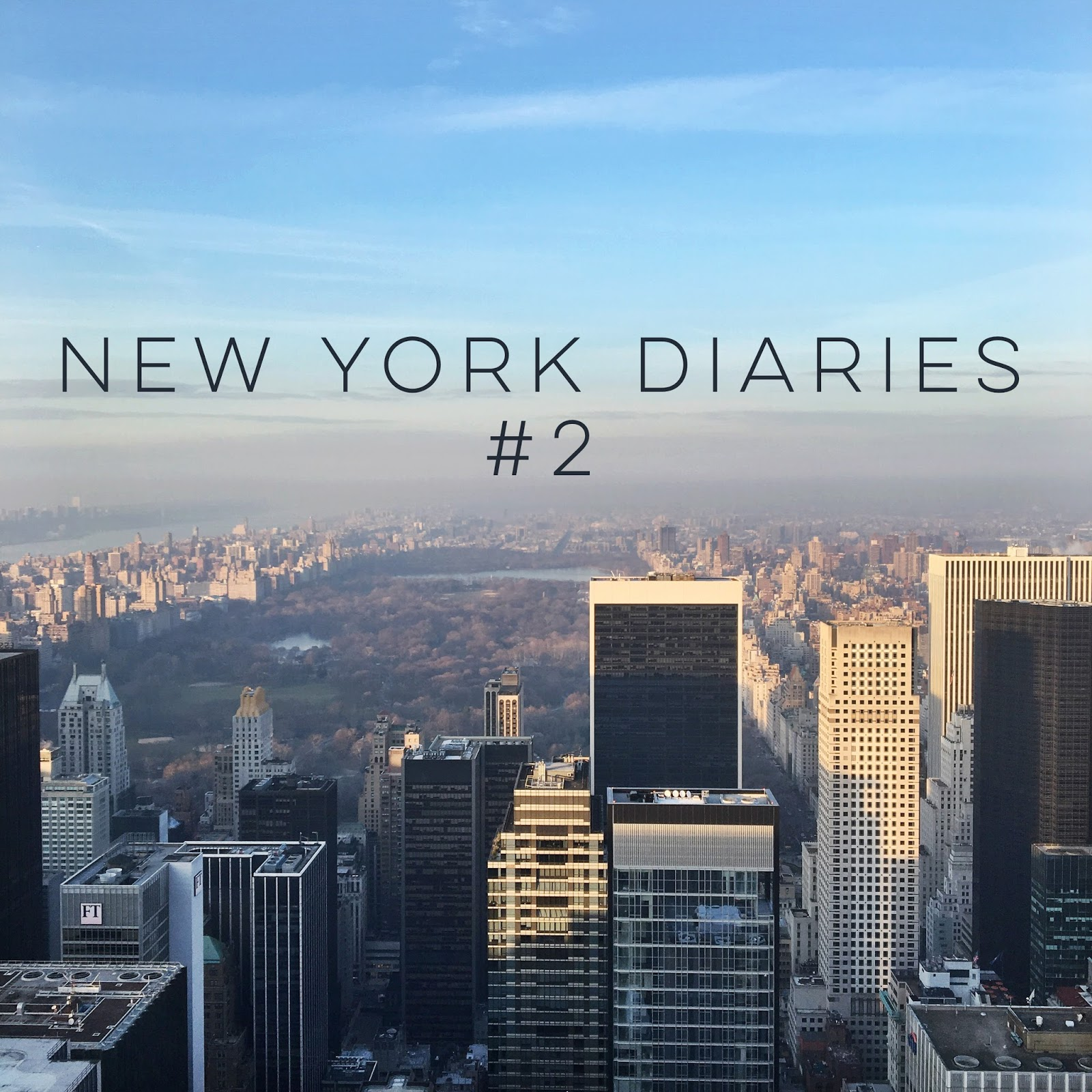 The New York Diaries #2