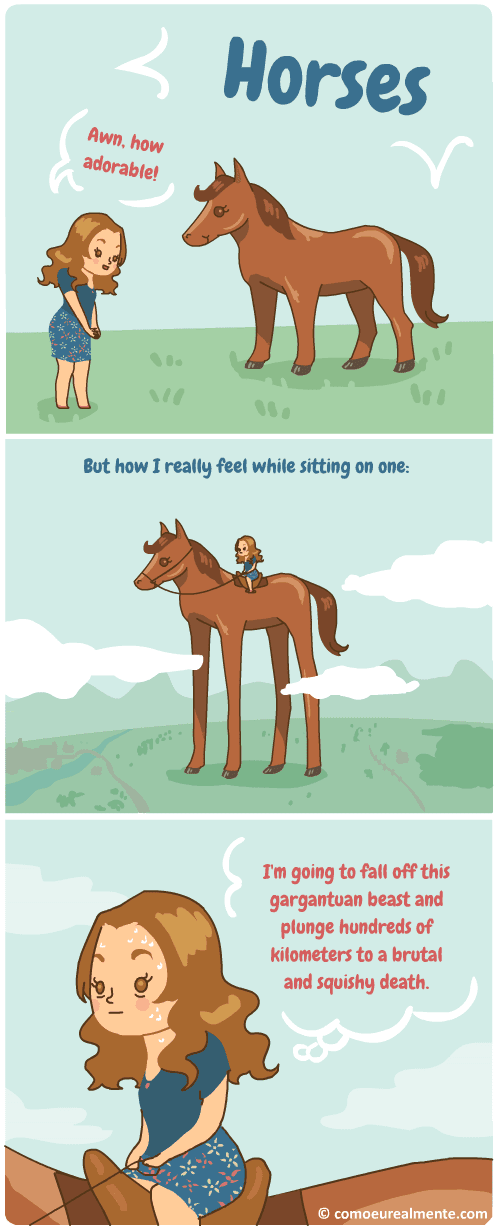 I love horses, but it's a bit frightening to ride one