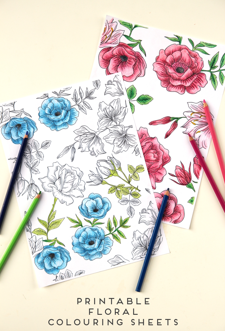 FREE FLORAL PRINTABLE COLOURING SHEETS.