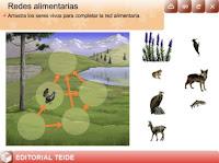 http://www.editorialteide.es/elearning/Primaria.asp?IdJuego=1705&IdTipoJuego=2