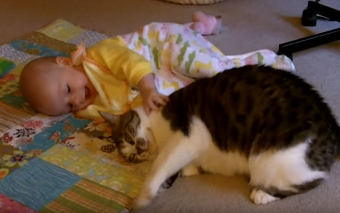 Super Careful Cat on Baby Girl Is So Cute to Watch, Cat picture