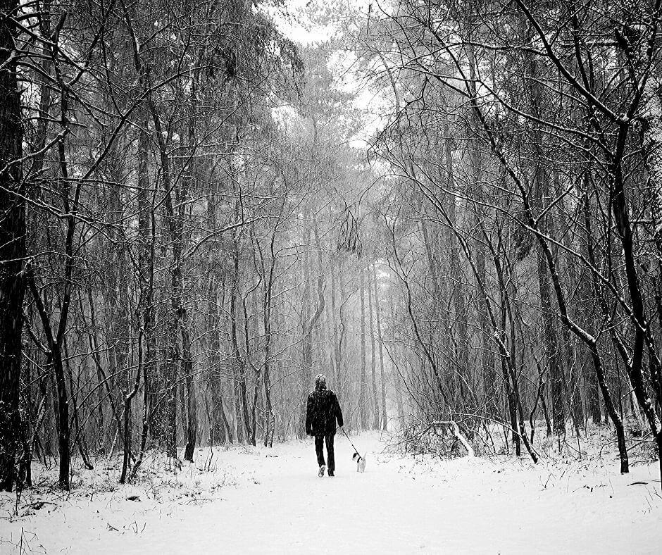 Joanne Dennehy - Peterborough Ditch Murders | Targeting men walking dogs.