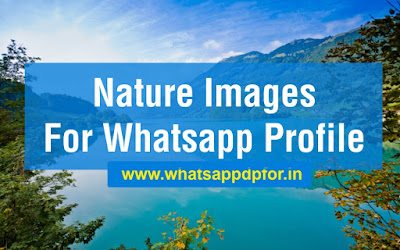 Nature Images For Whatsapp Profile