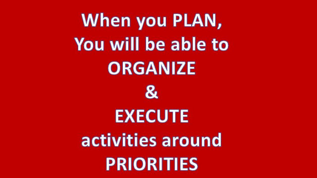 Ability to plan, organize and execute