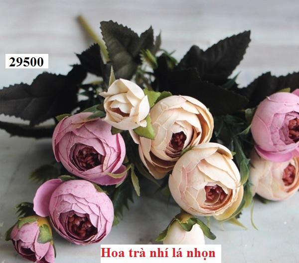 Phu kien hoa pha le tai Phuc Loi