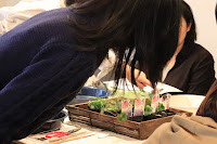 Cafeでのワークショップで山野草の花苗を生徒さんが選んでいる写真