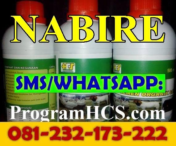 Jual SOC HCS Nabire