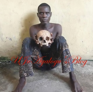 I sell fresh human skull for N1 million'