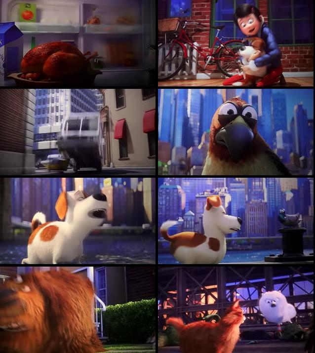 The Secret life of Pets 2016 English HDTS
