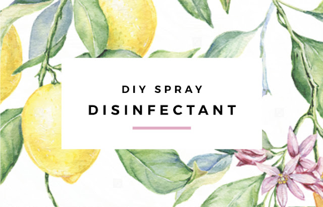 DIY Disinfectant Spray by Eliza Ellis