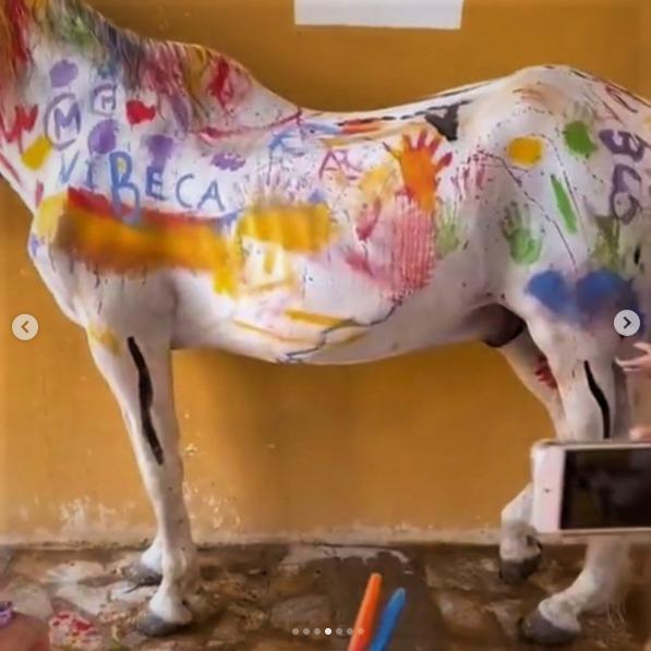 Pintan a un caballo en Murcia y las redes se indignan