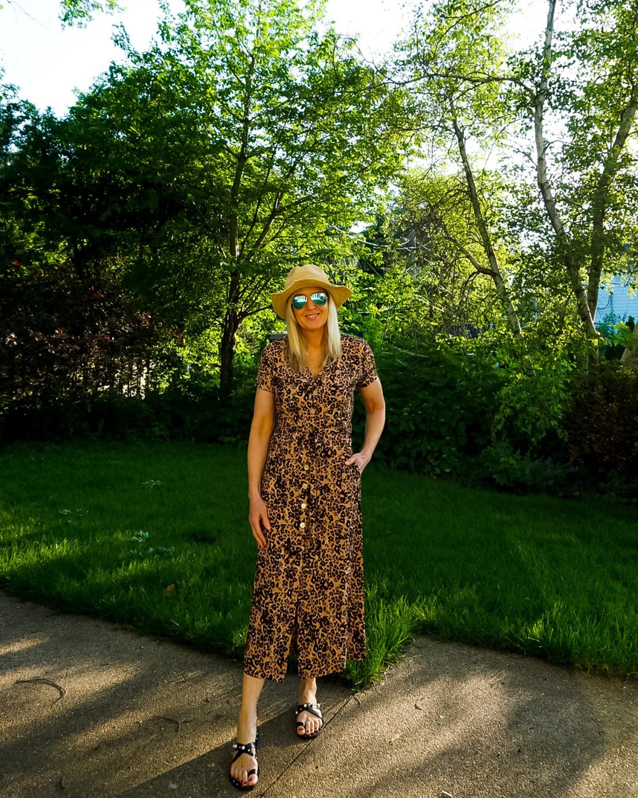 Wilfred Leopard Print Shirt Dress