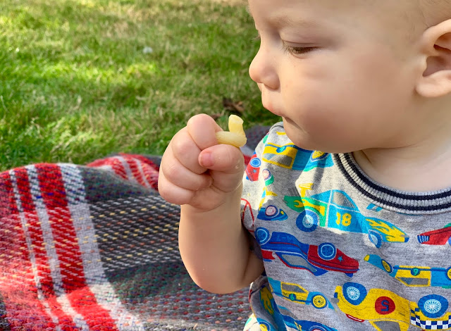 A 8 month old eating a piece of cold spirali pasta with his hand
