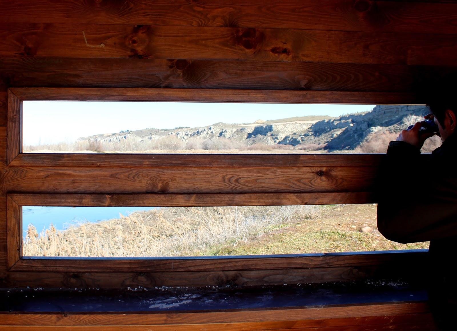 Observatorios de aves en la Ruta del Soto Bayona