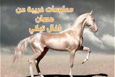 هل سمعت بقدرات حصان اخال تيكي Akhal-Tiki horse الخارقة !؟