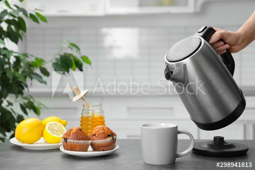 9 Best Multipurpose Electric Kettle [Buyers Guide 2021]