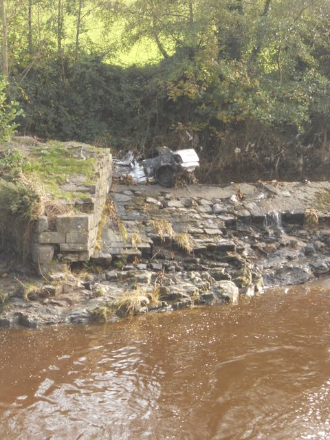 Walk the River Dodder in Dublin - Flood Debris