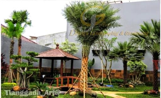 Tukang taman Surabaya, desain taman Surabaya, jasa tukang taman, tukang taman profesional