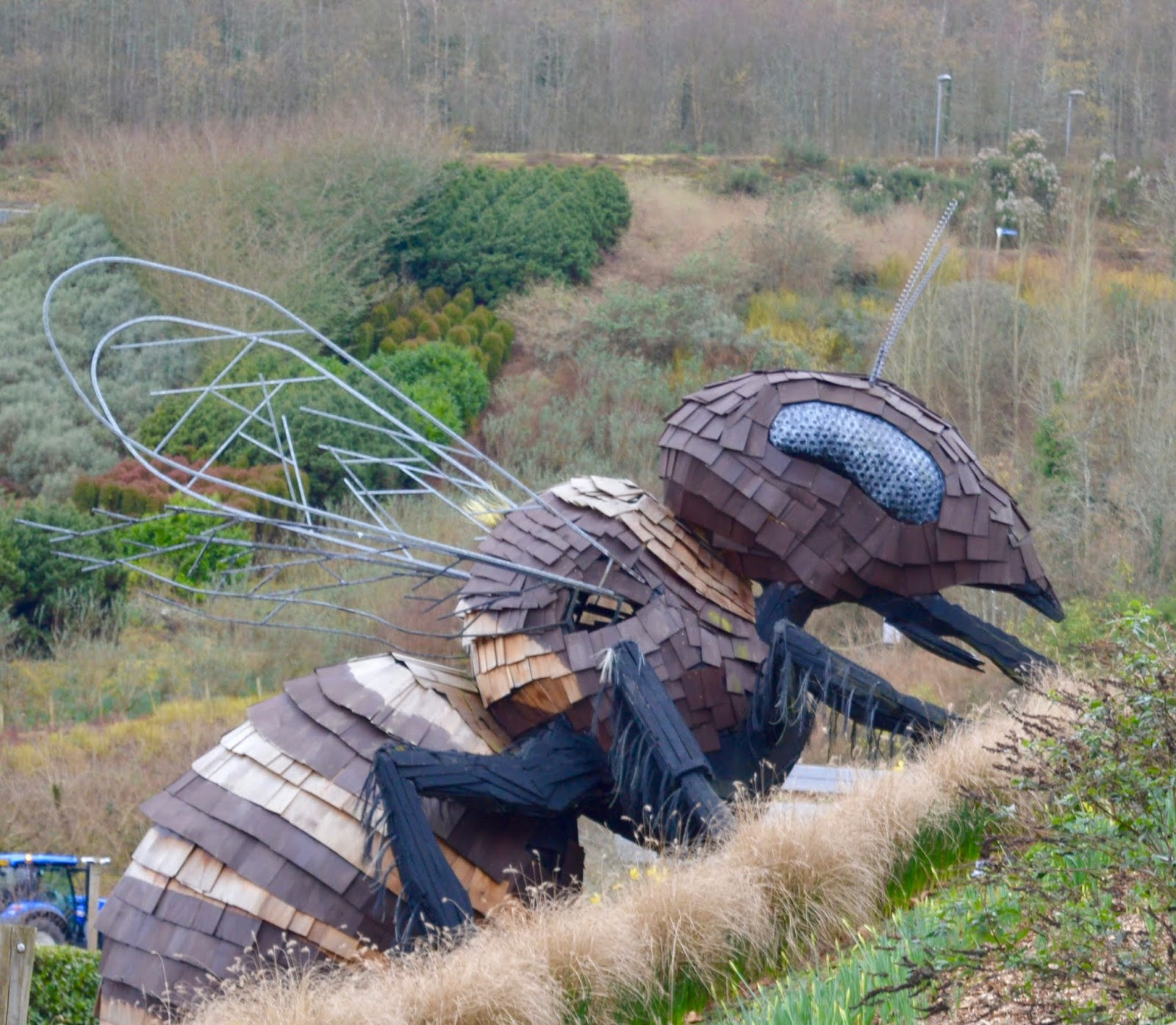 10 Reasons to Visit the Eden Project in Winter  - giant honey bee