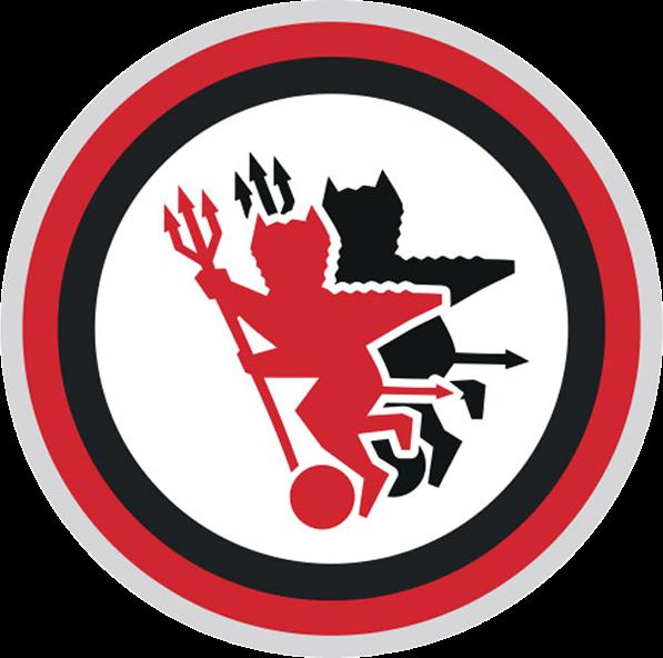 Foggia Calcio. Disputare i play-out è una «battaglia di civiltà giuridica». I legali del Comune di Foggia contrattaccano