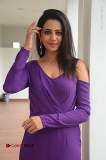 Actress Rakul Preet Singh Latest Stills in Beautiful Long Dress  0103.JPG