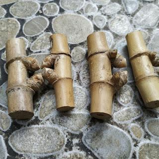 Pring Petuk, Bambu yang Bisa Bikin Kamu Kaya Mendadak