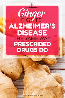 zenzero-combatte-la-malattia-di.Alzheimer