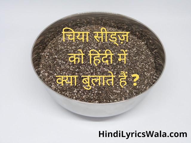 chia seeds meaning in hindi