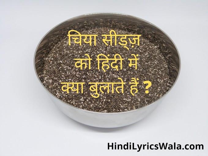 Chia Seeds Meaning In Hindi - चिया सीड्ज़ को हिंदी में क्या बुलाते हैं