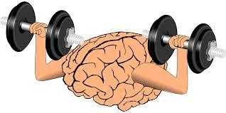 Perbezaan Otak Kanan Dan Otak Kiri