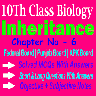 Chapter Wise Biology Notes KPK Federal and Punjab Board