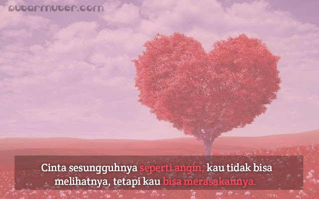 kata kata bijak tentang cinta sejati