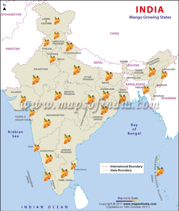 India 2016 Higher Mango Output May Keep Prices Reined In