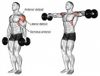 Top-5-Exercises-To-Build-Shoulders, Lateral-Raise