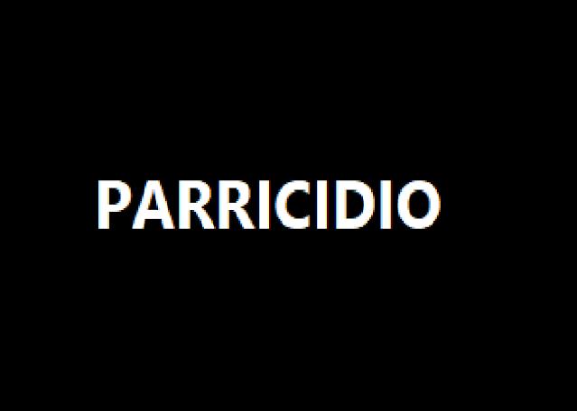 Porto Viro (Rovigo): ancora sangue in Italia. Figlio uccide Padre