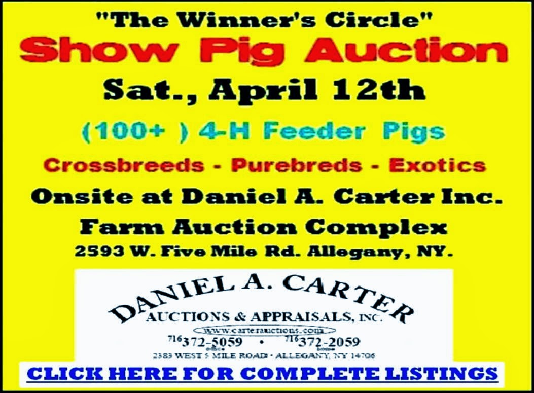 http://solomonsyardsale.blogspot.com/2014/03/4-h-show-pig-auction-saturday-april-12.html