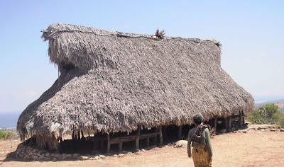 gambar rumah adat di sabu raijua