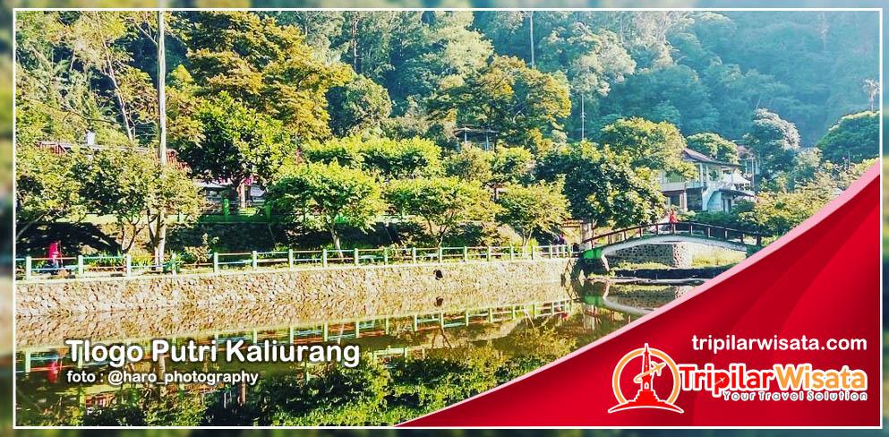 Tempat wisata jogja Tlogo Putri Kaliurang